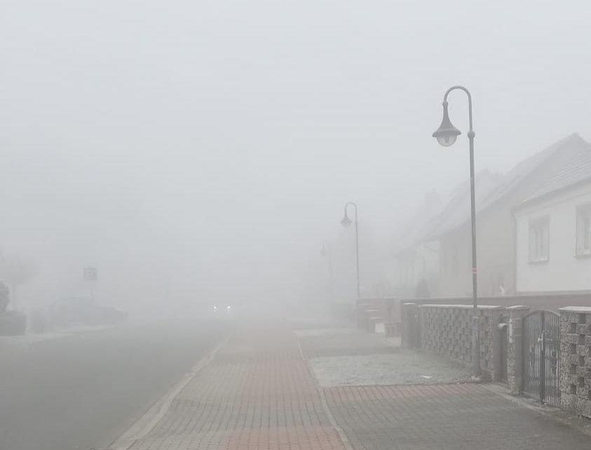 Im Nebelgrauen – am liebsten wär' ich Winnie Pooh